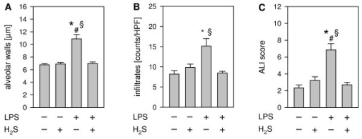 Effect of LPS and hydrogen sulfide inhalation on lung damage. As controls, mice received phosphate buffered saline (PBS, intranasally) and were kept in room air or in 80 ppm H2S for 6 h (plus 1 h pretreatment). LPS-treated mice (LPS treatment, i.n.) were either kept in room air or in 80 ppm H2S for 6 h (plus 1 h pretreatment). Sections from the left lung lobe were stained with hematoxylin and eosin. High power fields were randomly assigned to measure alveolar wall thickness (A), to count total infiltrate numbers (B), and to calculate an acute lung injury (ALI) score (C). Data represent means ± SEM for n = 7-8/group. ANOVA on Ranks (A + B, Dunn`s posthoc test) and ANOVA (C; Student-Newman-Keuls posthoc test), *P < 0.05 vs. PBS + air group; #P < 0.05 vs. PBS + H2S group; §P < 0.05 vs. LPS + H2S group.