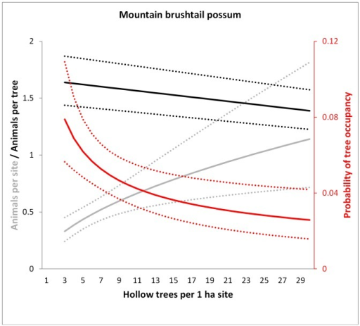 Model predictions for the mountain brushtail possum of the number of animals per site (grey), the probability of occupancy per tree (red) and the number of animals per occupied tree (black) in relation to the number of hollow trees per 1 ha site.Dotted lines show 95% confidence intervals. Predictions were averaged over the non-represented variables (e.g. tree form).