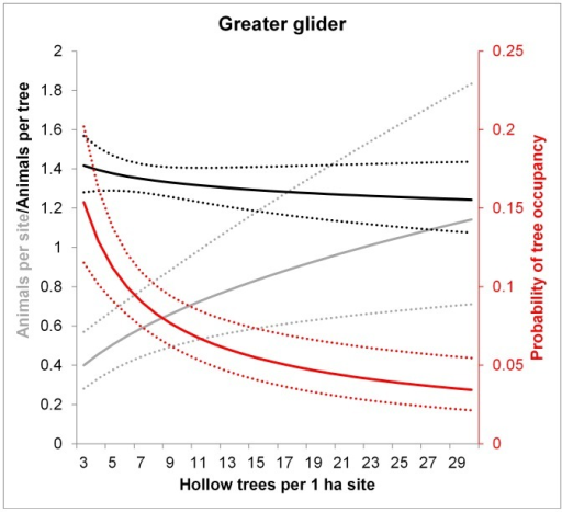 Model predictions for the greater glider of the number of animals per site (grey), the probability of occupancy per tree (red) and the number of animals per occupied tree (black) in relation to the number of hollow trees per 1 ha site.Dotted lines show 95% confidence intervals. Predictions were averaged over the non-represented variables (e.g. tree form). The number of animals per occupied tree (black lines) had a non-significant relationship with hollow tree abundance.
