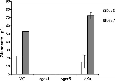 The results of fermentation test onΔgoxmutants in malic acid production medium. Only one sample from wild type strain was measured for gluconic acid production, whereas all others were tested in triplicates.