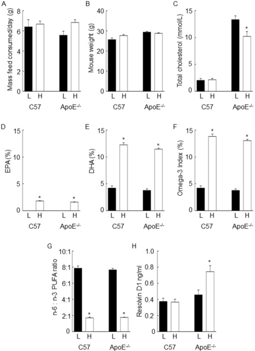 Effect of dietary omega-3 polyunsaturated fatty acids (n-3 PUFAs) on mouse feeding behaviour, fatty acid incorporation in membrane phospholipids, and plasma resolvin D1 concentration.Mice were fed for 8 weeks with a low or high n-3 PUFA diet, and infused for 2 days with either saline (C57 mice) or angiotensin II (ApoE-/- mice). Amount of feed consumed (A), and mouse weight after 8-week dietary supplementation (B) were unaffected by diet. Total cholesterol was elevated in ApoE-/- mice, and this was attenuated by the high n-3 PUFA diet (C). The percentage of total fatty acids containing DHA (D), EPA (E), and DHA plus EPA (n-3 index; F) was significantly greater in mice receiving the high, compared to the low n-3 PUFA diet. The ratio of n-6 to n-3 PUFAs was lower in the animals receiving the high, compared to the low n-3 PUFA diet (G). The plasma concentration of resolvin D1 was higher in ApoE-/- mice receiving a high, compared to the low n-3 PUFA diet, with no difference in C57 mice (H). *, P<0.05. L, low n-3 PUFA diet; H, high n-3 PUFA diet.
