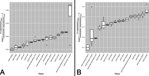 X-to-autosome expression variation among somatic tissues.X-to-autosome expression estimates were calculated for all four FlyAtlas replicates for each tissue using the log2 transformed ratios of the mean expression of X-linked expressed genes to mean expression of autosomal expressed genes for both the (A) non-sex-biased gene set and (B) sex-biased gene set. Tissues are sorted by their median log2 ratio among the FlyAtlas replicates.