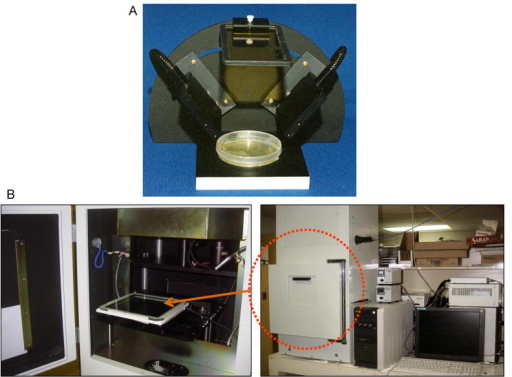 an example of the earliest prototype for in vivo imaging with GFP is the Illumatool a simple instrument with a light sources that are properly filtered to avoid autofluorescence and an emission filter through which it is possible to image GFP fluorescence from unrestrained animals.11 An example of the best state of the art, OV100 small animal imaging system: The OV-100 Small Animal Imaging System (Olympus, Tokyo, Japan), containing an MT-20 light source (Olympus) and DP70 CCD camera (Olympus) was used. The optics of the OV-100 fluorescence imaging system have been specially developed for macroimaging as well as microimaging with high light-gathering capacity. The instrument incorporates a unique combination of high numerical aperture and long working distance. Five individually optimized objective lenses, parcentered and parfocal, provide a 105-fold magnification range for seamless imaging of the entire body down to the subcellular level without disturbing the animal. The OV-100 has the lenses mounted on an automated turret with a high magnification range of ×1.6 to ×16 and a field of view ranging from 6.9 to 0.69 mm. The optics and antireflective coatings ensure optimal imaging of multiplexed fluorescent reporters in small animals. High-resolution images were captured directly on a PC (Fujitsu Siemens, Munich, Germany). Images were processed for contrast and brightness and analyzed with the use of Paint Shop Pro 8 and CellR (Olympus Biosystems).13