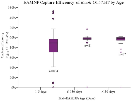 Capture efficiency (log10 of CFU/mL captured/ log10 of CFU/mL present) of each E. coli O157:H7 sakai strain captured in IMS, using Mab-EAMNPs, at varying days from conjugation stored at refrigerated temperatures from (1–5 days, n = 184; 6–130 days, n = 31; 130 to 149 days, n = 37). There was no statistical difference between any of the three groups.