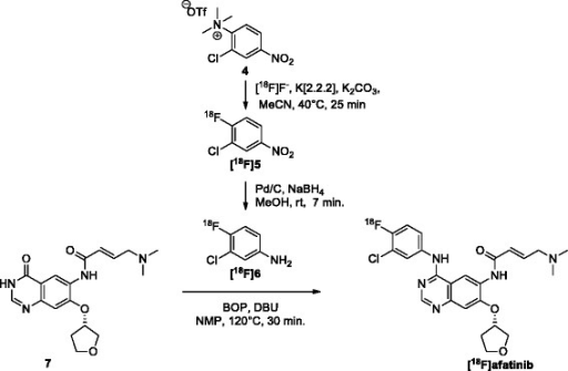 Radiosynthesis of [18F]6 and subsequent condensation towards [18F]afatinib. MeCN, acetonitrile; MeOH, methanol; DBU, 1,8-diazabicyclo[5.4.0]undec-7-een; NMP, N-methylpyrrolidone.