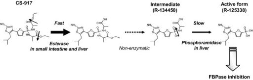 Two-step activation of bisamidate prodrug CS-917 to the active form, R-125338. CS-917 is activated into the active form (R-125338) by a two-step enzyme-catalyzed reaction after oral administration. In the first step, CS-917 is hydrolyzed by an esterase and the resultant monoester is spontaneously hydrolyzed to form a monoamidate intermediate (R-134450) in the small intestine and the liver. In the second step, the P–N bond of the R-134450 is hydrolyzed by a phosphoramidase to generate R-125338 in the liver. The first step is observed to be fast and the second step is observed to be slow and rate-limiting.