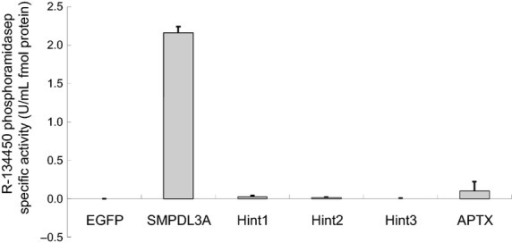 Specific R-134450 phosphoramidase activity of candidate genes. Candidate genes (SMPDL3A, HINT1, HINT2, HINT3, and APTX) and the negative control (EGFP) were expressed in the human cell line, the recombinant proteins were purified using fused FLAG-tag, and the R-134450 phosphoramidase activity was tested. The purified proteins were quantified by Western blotting, and the specific activity was calculated. Four to seven independent experiments were conducted (4 for HINT1, HINT2, HINT3, and APTX, and 7 for EGFP and SMPDL3A). The results are expressed as the means ± SD (three technical replicates from a single experiment). EGFP, enhanced green fluorescent protein.