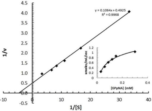 Michaelis-Menten kinetics of the recombinant spPEP from the soluble protein fraction. PGpNA concentrations were varied from 0 to 300 µM in 0.1 M ethanolamine buffer, pH 8.5, containing 0.1 M NaCl and 1 mM DTT. The reaction was started by the addition 130 µg of purified spPEP per well. The A410 was monitored over time. The Km and Vmax were determined from the double reciprocal plot, 1/v vs 1/[GPpNA]. The inset shows the initial velocities obtained for each substrate concentration plotted vs. substrate concentration to generate the Michaelis-Menten curve. A Vmax of 106 µmole/mL/min was used with the µM concentration of PEP to determine the turnover number.
