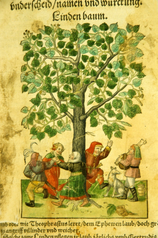 <p>Illustration of a genre scene of men and women dancing around a linden tree, while another man plays bagpipes next to a dog.</p>
