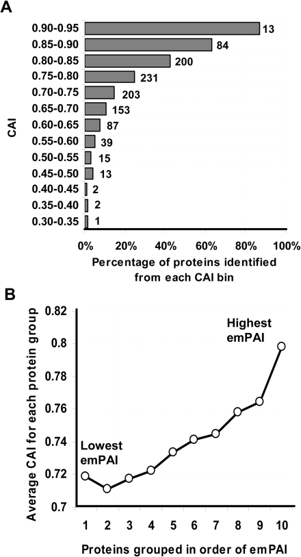 "Relationship between CAI and protein identification or abundance.(A) Percentage of proteins identified in various CAI ranges. Values beside the bars represent the absolute number of proteins identified from each bin (B) Average CAI of identified proteins in different abundance groups; values in horizontal axis correspond to protein abundance, ""10"" indicating the top 10 percentile (most abundant) to ""1"" indicating the bottom 10 percentile (least abundant) proteins. Protein abundance was estimated from MS data using emPAI based on number of MS/MS spectral evidences (refer to Materials and Methods)"
