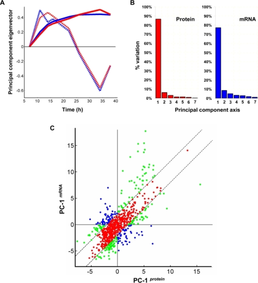 Principal component analysis of transcriptome and proteome data.(A) 'Loadings' (eigenvector) plot for the first two principal component axes – PC-1 (solid lines) and PC-2 (dashed lines) from proteome (red lines) and transcriptome (blue lines) data (B) Percentage of variation accounted for by each of the seven principal components in proteome and transcriptome data (C) Values of genes along PC-1protein plotted against PC-1mRNA. Green and blue dots represent genes with significantly large difference in expression trends (/PC-1protein−PC-1mRNA/≥2). Of these, blue dots indicate those which are likely to exhibit opposing trends (2nd and 4th quadrants). All other genes are shown as red dots.