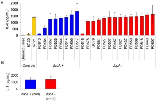 IL-8 induction in AGS cells by clinical isolates in vitro. (A) Induction of IL-8 secretion in AGS cells incubated with indicated strains for 6 hours. The error bars show the standard deviations of each independent experiment. (B) Average induction of IL-8 secretion in AGS cells incubated with dupA positive (blue) or negative (red) strains. The error bars show the standard deviations for each group of strains.