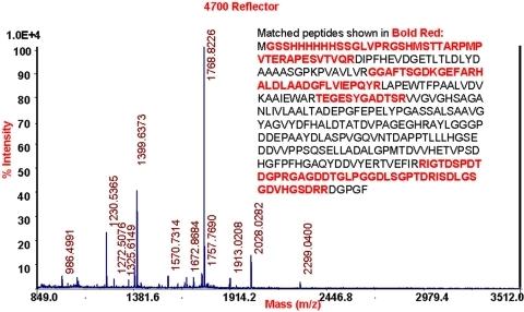 MALDI-TOF peptide mass fingerprint (PMF) spectrum.The P | Open-i