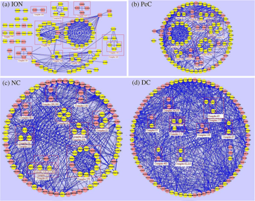 Proteins ranked in top 100 by ION, PeC, NC and DC and the complexes they belong to. The figure shows the proteins ranked in top 100 by ION, PeC, NC and DC, and the networks constructed by these proteins. The proteins included in a red square belong to a common complex. The yellow nodes denote true essential proteins. In (a), the nodes with the shape of round rectangle represent the different proteins detected by ION while ignored by all of the eight other existing centrality methods.