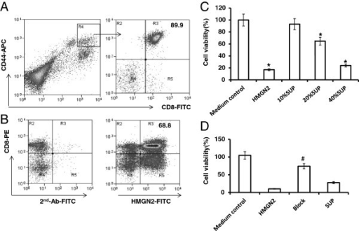 T-Ag activated CD8+T cells released HMGN2 to kill tumor cells. PBMCs were seeded at a density of 1 × 107 per well in 6 well plates and stimulated with 150 μg/ml T-Ag for 7 days. (A) Cells were removed and stained with CD44-APC/CD8-FITC. CD44high/CD8+T activated T cells (Gate R4) were purified with MoFlo XDP sorter. The purified CD44high/CD8+T cells were cultured in complete medium with 2000 IU/ml IL-2 for 5 days. (B) The cells were removed and stained with Anti-CD8-PE surface stained and anti-HMGN2/IgG-FITC intracellular stained. (C) The antitumor effects of the supernatants at different concentration. (D) The antitumor effects of the 20% (v/v) supernatants after blocking HMHN2 using anti-HMGN2 antibody. Figures are representative of three independent experiments. Data are represented as means ± SD of three independent experiments. *Significantly decreased compared to medium control (p < 0.05). #Significantly decreased after with anti-HMGN2 antibody (p < 0.05).