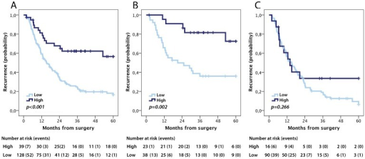 Kaplan-Meier estimates of recurrence free survival according to pIgR expression.Recurrence-free survival according to high and low pIgR expression in (A) the entire cohort, (B) intestinal type tumours and (C) pancreatobiliary type tumours.