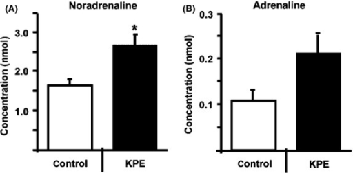 KPE increases urinary noradrenaline secretion in C57BL/6J mice. Urinary noradrenaline (A) and adrenaline (B) secretion in C57BL/6J mice with 0.5% KPE treatment (n = 8) and without KPE treatment (n = 6) for 2 weeks under HFD feeding. Urinary adrenaline and noradrenaline levels were measured by HPLC analysis. These procedures were aproved by the Institutional Animal Care and Use Committee of Kobe Women's University, Faculty of Home Economics (A316). Each bar represents means ± SE *P < 0.05 compared with untreated control group. KPE,K. parviflora extract.