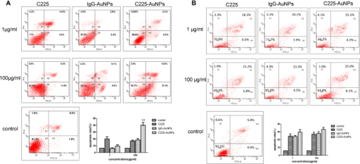 Apoptotic evaluation of cell lines treated with indicated concentrations of C225, IgG-AuNPs or C225-AuNPs for 48 h using the FITC-Annexin V apoptosis Detection Kit I assay.A) A549 cells; B) H1299 cells. Values represent the means ± SD. (**p < 0.01; *p < 0.05).