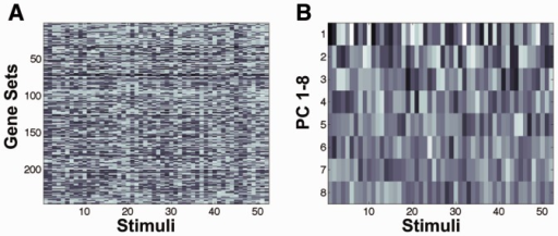 PCA of the training data. (A) The gene set enrichment data (NES score) of the 246 rat genes (rows) as a function of the 52 stimuli (columns) used in the experiments. (B) The first eight principal components of the data in (A). The first principal component clearly shows the largest variation over the stimuli. The variation decreases for higher ranked components