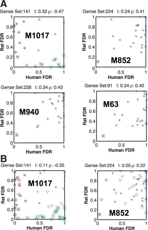 Comparing the correlation between gene sets of human and rat. (A) The rat versus human FDR scores of a given gene set are shown for the 26 stimuli in set A (blue dots). Stimuli with expression levels significantly different from those in control are marked with green squares for rat and red circles for human. When the two markers overlap, that particular stimulus results in a similar response in the two species. The highest MI is surprisingly between gene sets that are negatively correlated. In general, the correlation is lower than the intra-species gene and phosphorylation or the inter-species phosphorylation patterns. The legend above each subplot shows the inter-species MI I and the Pearson correlation coefficient ρ. The gene sets shown are M1017, DNA replication; M852, NFκB activation by TAK1 through phosphorylation and IKKs complex; M940, NFκB activation by TRAF6; M63, osteopontin-mediated events (Subramanian et al., 2005). (B) The first two gene sets, with the additional 26 stimuli of the test set also, shown (triangles). M1017 remains the gene set with the highest inter-species MI through anticorrelation. Although MI is lower, the statistical significance is not diminished