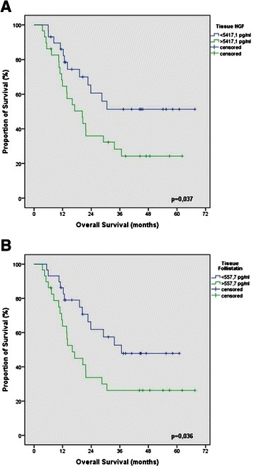 Prognostic cytokines in the tissue of esophageal cancer patients. Kaplan-Maier plots for overall survival of esophageal cancer patients according to A) tissue protein levels of HGF (smaller and higher then median of 5417,1 pg/ml) and B) tissue protein levels of follistatin (smaller and higher then median of 557,7 pg/ml) (n = 58; p < 0.05).