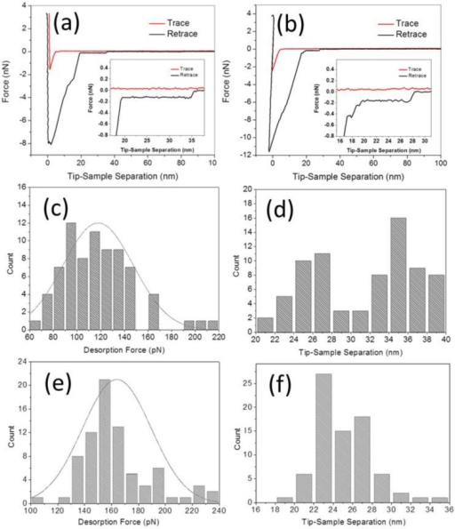 SMFS experiments and statistical analysis: (a,b) Typical FD curve by peeling aptamer from graphite surface (a) before and (b) after adding 1 μM adenosine; (c,d) Distributions of the desorption forces and tip-sample separations corresponding to the FD curves of (a); (e,f) same, for the FD curves of (b). After the adding of adenosine, the mean desorption force by peeling aptamer from graphite surface increased from 117.8 ± 29.5 to 164.3 ± 25.4 pN, and the mean tip-sample separation decreased from about 36.1 ± 2.0 to 25.2 ± 3.4 nm.