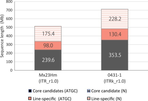 Total lengths of core candidates and line-specific sequences of ITR_r1.0 (Mx23Hm) and ITRk_r1.0 (0431-1).