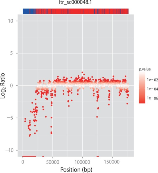 CNV distributions and corresponding positions of core candidates and line-specific sequences of scaffold Itr_sc000048.1 (1,177,009 bases in length). Red dots show the log2 ratios of CNVs between Mx23Hm and 0431-1. The upper bar represents core candidate (red) and line-specific (blue) sequences in their corresponding positions.