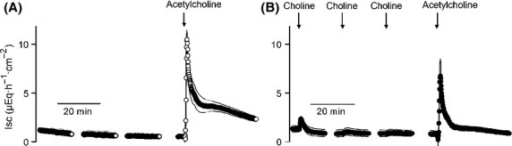 Choline desensitizes the tissue against acetylcholine. Acetylcholine (10−3 mol/L) induces a long-lasting increase in Isc across mucosa–submucosa preparations under control conditions (A), which is desensitized by three prior administrations of choline (10−3 mol/L; B). Values are given as means (symbols) ± SEM (lines), n = 6–7. Line interruptions are caused by omission of time intervals in order to synchronize the tracings of individual records to the administration of drugs. For statistics, see Table2.