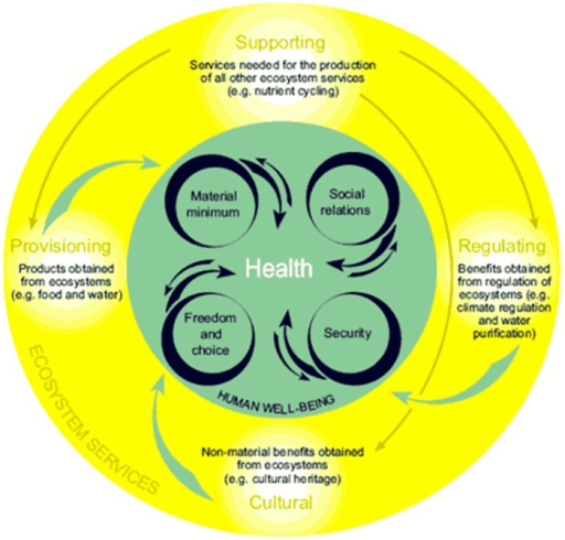 Ecosystem services and health.