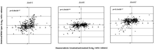 Transcription ratios between daunorubicin-treated cells and three strains deleted for different transcription factors. The X-axis corresponds to microarray data for cells treated with daunorubicin for four hours (treated vs. untreated, log2 values). The Y-axis corresponds to data from reference [17]. Only data for the 475 genes affected by daunorubicin were considered.