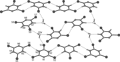 Hydrogen-bonded linking pattern of the separated unit in the crystal structure of the title compound.