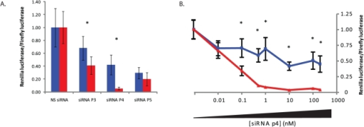 Screening of LRRK2 G2019S-targeting siRNAs against dual-luciferase targets.A) Dual-luciferase assays at 48 hrs with stated siRNAs targeting the G2019S LRRK2 mutant following co-transfection with wild-type (blue lines) or mutant (red lines) luciferase targets. B) Dual-luciferase assays at 48 hrs with siRNA p4 targeting the G2019S LRRK2 mutant at stated concentration following co-transfection with wild-type (blue lines) or mutant (red lines) luciferase targets. Values represent mean ratios of Renilla:Firefly luciferase +/− S.D. from n = 6. Values are normalized to cells transfected with non-specific shRNA and respective luciferase target. * = P<0.05 relative to respective normalising control.