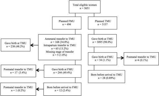 Study population and transfers from freestanding midwifery units (FMU) to tertiary level maternity unit (TMU). Percentages expressed by planned place of birth.