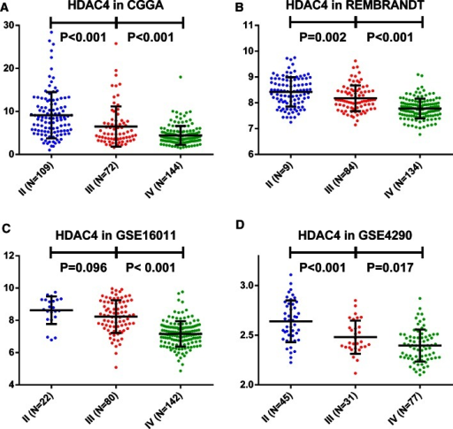 HDAC4 expression is negatively correlated with tumor grade. The association between HDAC4 expression level and grade II, III, and IV glioma was evaluated in the CGGA (a) and three other validation sets (b–d)