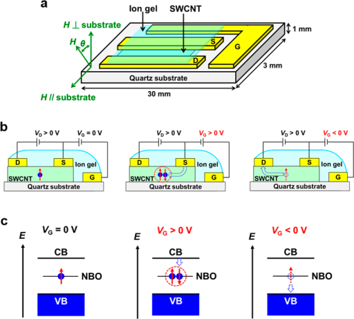 Schematics of a SWCNT transistor and spin states in SWCNTs.(a) Schematic of the device structure of the SWCNT transistor used in this study. (b) Schematics of the cross section of the device structure with spin states in the transistor at VG = 0 V (left), for VG > 0 V (center), and for VG < 0 V (right). (c) Schematics of the energy diagram of conduction band (CB), valence band (VB), and non-bonding orbital (NBO) of the SWCNTs with spin states at VG = 0 V (left), for VG > 0 V (center), and for VG < 0 V (right).