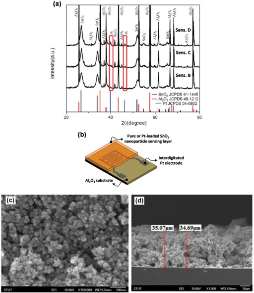 (a) XRD result of sensing film loaded with different concentrations of Pt; (b) Schematic illustration of thick film sensor utilizing interdigitated Pt electrodes. SEM image showing (c) top view and (d) cross sectional morphology of sensing film.