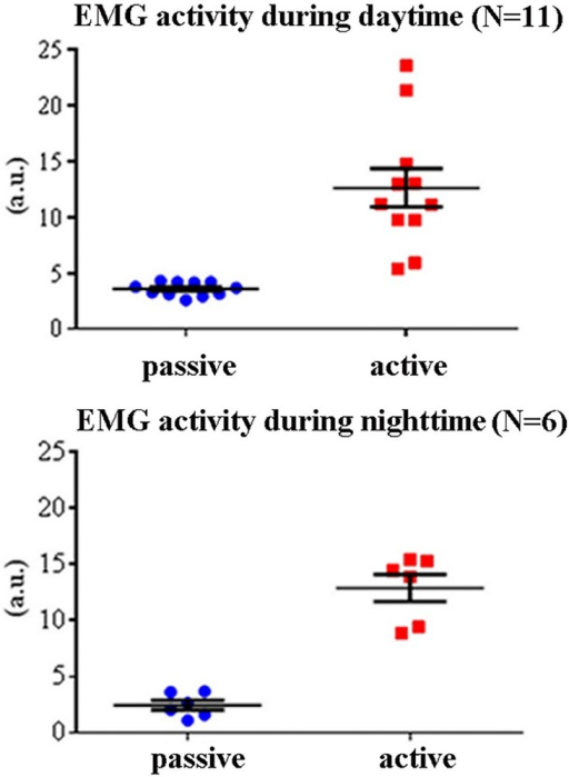 Individual values of the mean rectified EMG activity for any lemur and the active and passive states.These values refer to the daytime (N = 11) and nighttime (N = 6) periods of interest. The mean (± SE) of the rectified EMG activities are also plotted. Lemurs having an insufficient amount of artefact-free EEG epochs in the passive state for the final analysis were not considered (daytime: L#4 and L#10; nighttime: L#1, L#2, L#3, L#4, L#11, L#12, and L#13).