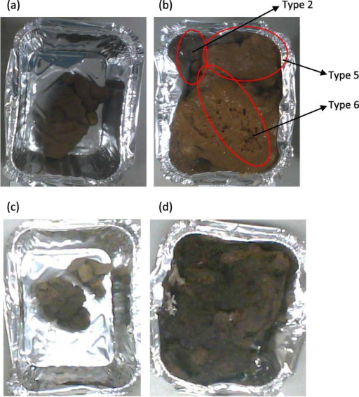 (a–d): Human Faeces: (a) Type 2 fresh sample (as-received basis, prior to drying. (b) Mixture of Type 2, 5 and 6 fresh sample (as-received basis, prior to drying). (c) Type 2 sample (after drying). (d) Mixture of Type 2, 5 and 6 sample (after drying).