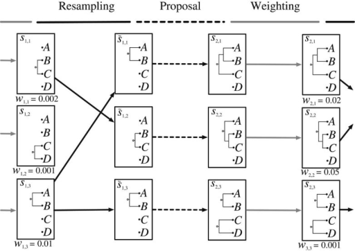 An overview of the PosetSMC algorithmic framework. A PosetSMC algorithm maintains a set of partial states (three partial states are shown in the leftmost column in the figure; each partial state is a forest over the leaves A, B, C, and D). Associated with each partial state is a positive-valued weight. The algorithm iterates the following three steps: (i) resample from the weighted partial states to obtain an unweighted set of partial states, (ii) propose an extension of each partial state to a new partial state in which two trees in the forest have been connected, and (iii) calculate the weights associated with the new partial states.