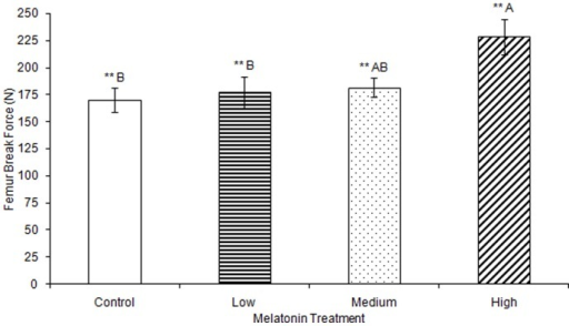 Femur break force was significantly greater in birds treated with high concentrations of melatonin (228.35±16.22) compared to birds treated with low concentrations of melatonin (177.15±14.22) or controls (170.03±11.18; p<0.01).Groups sharing a letter are not significantly different.