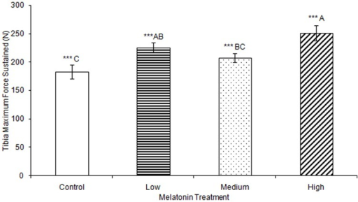 Maximum force sustained by tibias was significantly greater in birds treated with high concentrations of melatonin (251.09±13.51) compared to those from birds treated with medium concentrations of melatonin (207.40±8.26) or controls (182.97±12.16; p<0.001), and significantly greater in birds treated with low concentrations of melatonin (225.13±8.86) compared to those from control birds (p<0.001).Groups sharing a letter are not significantly different.