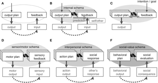 Concept of internal schema. Repeated experience of output and feedback input (A) results in development of internal schema, which is an association between the neural-representation of an output plan and that of feedback input (B); the schema enables forward prediction, which underlies the sense of self in any category. The schema is not exclusively dedicated to self-cognition but is used as an inverse model to plan output to obtain intended feedback input (C). A different internal schema underlies each category of self: the sensorimotor schema associates motor plan with sensory-feedback to develop the physical self (D), the interpersonal schema associates one's own action plan with feedback on the social responses by others to develop the interpersonal self (E), and the social-value schema associates one's behavioral plan with consequential social evaluation to represents the self as a collection of context-dependent social-values (F).
