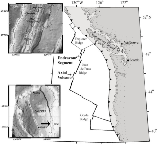 Locations of sampling sites on Juan de Fuca Ridge.Endeavour inset shows the three sampled vent fields: Clam Bed, Main Endeavour and Mothra. Axial inset shows locations of samples from three fields and the grey line near SRZ (arrow) delineates the extent of the 1998 lava flow.