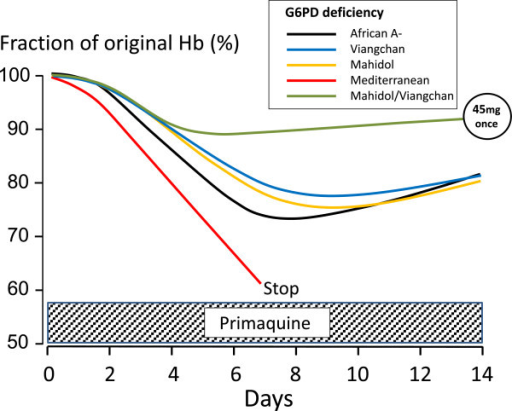 Primaquine-induced haemolysis in adults with different G6PD variants during daily dosing. Primaquine was given daily for 14 days at a dose of 30 mg/day in individuals with Mediterranean and African A-variants [18, 21] and 15 mg/day for Mahidol or Viangchan variants [22, 23]. The effects of a 45-mg single primaquine dose in individuals with either Mahidol or Viangchan variants are shown for comparison [24]. This figure uses data derived from different studies as referenced.