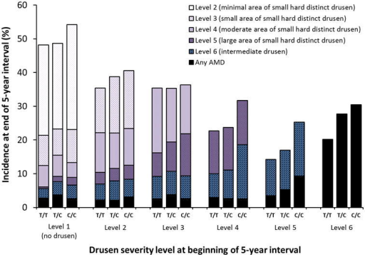 Five-year incidence of increasing area of small hard drusen, intermediate drusen, and any AMD by CFH Y402H (rs1061170) genotype and severity level at the beginning of the interval.