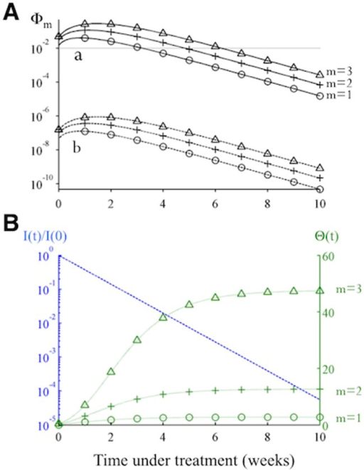 There is a high-risk window early in treatment when missing doses is more likely to cause de novo resistance.(A) The changes in the risk of de novo resistance, Φm, generated by a partially resistant mutant over time. The two sets of trajectories, A and B, differ in that the value of μeff for trajectory B is smaller by a factor of 10–5 (representing one additional nucleotide mutation) than the value set for trajectory A. Each set of trajectories shows the risk when the number of doses missed (m) is 1,2 or 3. (B) Dynamics of the two time-varying quantities in Eq 4, i.e. the number of cells infected by the partially resistant mutant relative to the initial number before treatment (I(t)/I(0); blue dashed line), and the value of Θ(t), green dotted lines, as shown in Eq 4. Under effective treatment, the number of infected cells I(t) decreases exponentially, while the number of target cells rebounds to the infection-free level quickly, causing an increase in Rave,m and thus Θ(t). Together these changes cause Φm to increase initially and then to decrease exponentially at longer times (as seen in panel A).