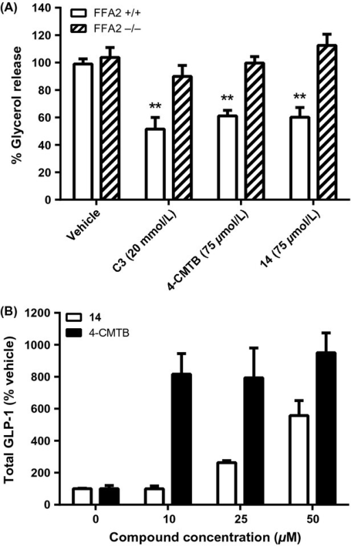 Effects of FFA2 agonists on lipolysis and GLP-1 release in mouse cells. (A) Adipose tissue explants from FFA2−/− mice and matched wild-type littermates were treated in vitro with vehicle, C3 (20 mmol/L), 4-CMTB, or 14 (75 μmol/L) and lipolysis determined by measurement of glycerol release. Data represent mean ± SEM (n = 6–11 across two experiment occasions; **P < 0.01). (B) Cultured mouse enteroendocrine STC-1 cells were treated with 4-CMTB or 14 (0–50 μmol/L) and GLP-1 secretion was measured by an ELISA-based method (MSD). Bars show mean ± SD; experiment repeated 2–5 times for each compound and representative experiment shown. 4-CMTB, 4-chloro-α-(1-methylethyl)-N-2-thiazolyl-benzeneacetamide.