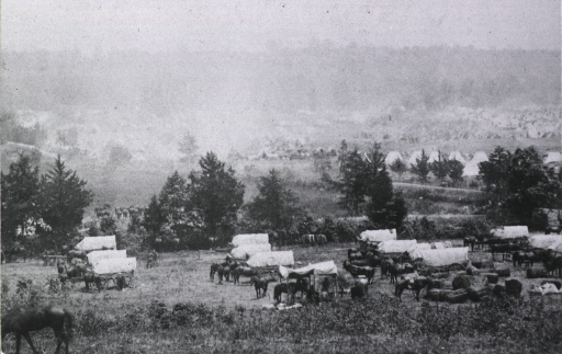 <p>View of an encampment with many horses and covered wagons.</p>