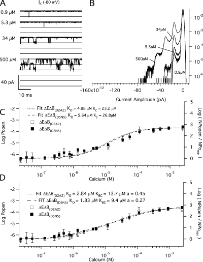 The Ca2+ binding affinities of the high-affinity RCK1 site at −80 mV. (A) Inward K+ currents recorded from mutant ΔEΔB(D2A2) at −80 mV and filtered at 10 kHz from a macropatch in the indicated [Ca2+] demonstrate that Popen increases in a Ca2+-dependent manner when voltage is constant. The corresponding all-points amplitude histograms are plotted in B on a semi-log scale and were constructed from 30-s recordings. The dose–response relation for the effect of Ca2+ on Popen (left axis) and NPopen/NPopenmin (right axis) at negative voltage (−80 mV) is shown in C. Each point represents the average of between 6 and 16 patches at each Ca2+ concentration tested. For mutant ΔEΔB(D2A2) (open squares), log (NPopen/NPopenmin) spans the entire [Ca2+] range and is fitted (dotted line) by Eq. 6 yielding values of KO = 4.9 μM of KC = 23.2 μM. For mutant ΔEΔB(D5N5) (closed squares), the fit (dashed line) yields values of KOB = 5.6 μM and KCB = 26.8 μM. (D) The data were also fitted with Eq. 7, which incorporates an interaction between binding sites. For mutant ΔEΔB(D2A2) (open squares), the fit yielded values of KO = 2.8 μM, KC = 13.7 μM, and f = 0.45. For mutant ΔEΔB(D5N5) (closed squares), the fit (dashed line) yielded KO = 1.8 μM, KC = 9.4 μM, and f = 0.27. Error bars represent SEM.